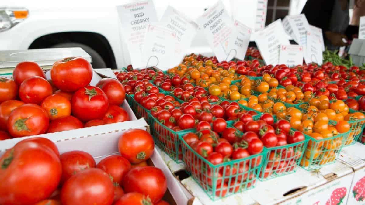 healthy summer farmer's market tomatoes