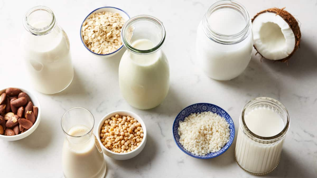 jugs of plant-based milk alternatives with bowls of grains and nuts