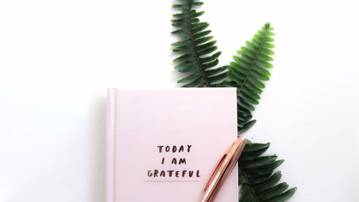 gratitude journal with ferns