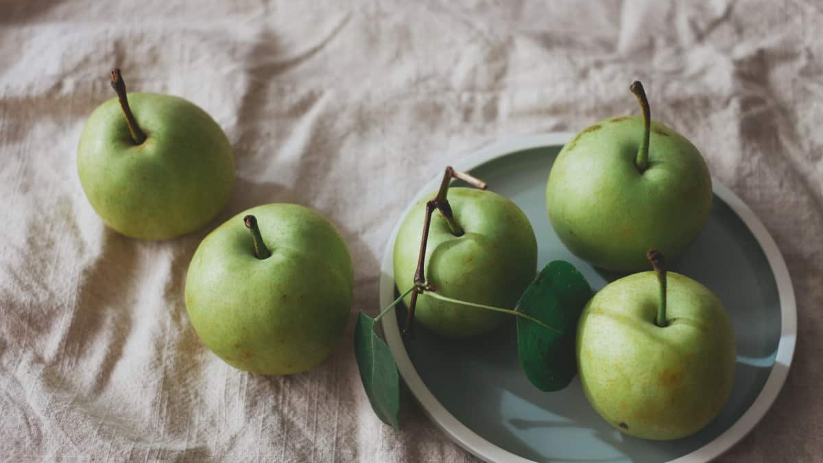 apples for a green snack