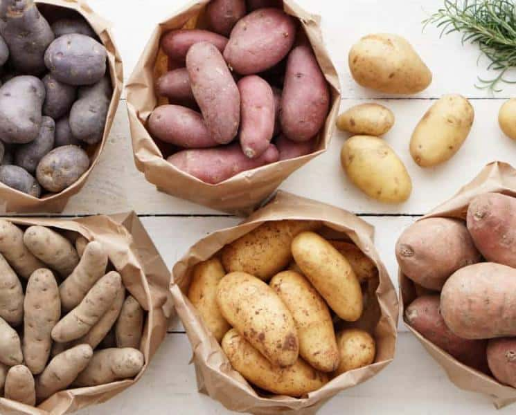 The Ultimate Guide to Different Types of Potatoes
